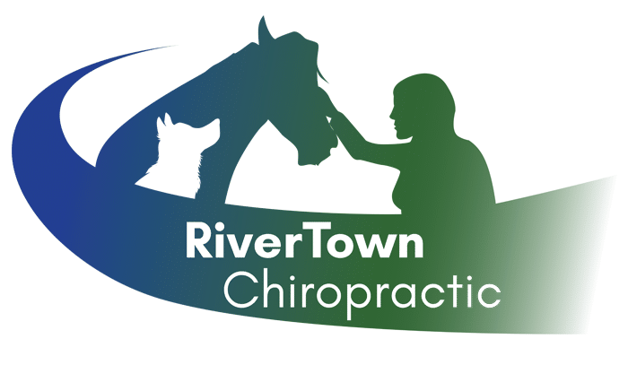 RiverTown Chiropractic